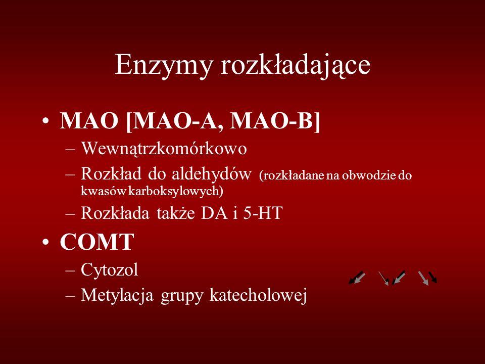 Enzymy rozkładające MAO [MAO-A, MAO-B] COMT Wewnątrzkomórkowo